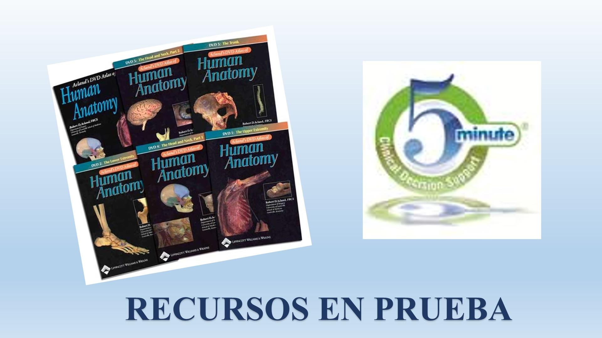 Asombroso Aclands Dvd Anatomía Cresta - Imágenes de Anatomía Humana ...